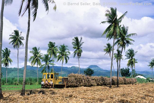 Bais Sugar Central Iron Dinosaur. Photo by Bernd Seiler.