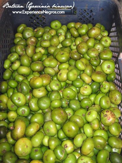 batuan fruits